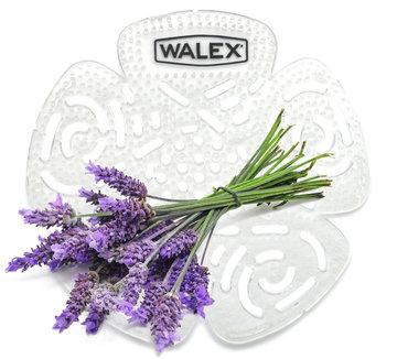 Urinoirrooster standaard Walex Lavendel